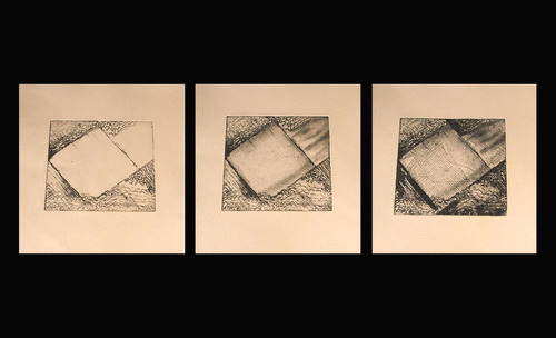20120709123328-diana_furlong_transition_1_etchings