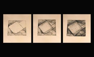 20120709123328-diana_furlong_transition_1_etchings