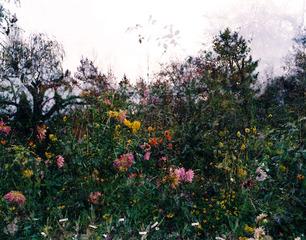 20120717235410-horizontal-garden__giverny-sa