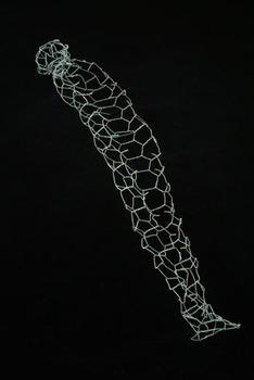 20120718221604-chrysalis