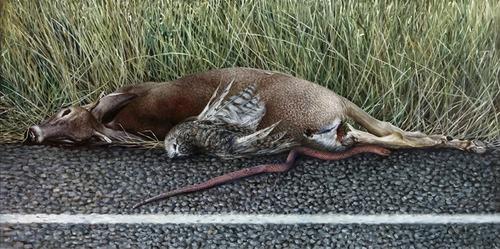 20120719092753-roadkill