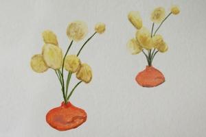 20120719222148-plantstudies07cropped