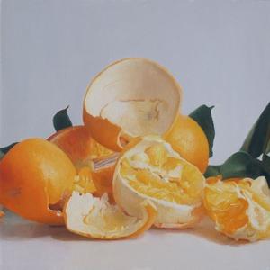 20120723030354-citrusrs