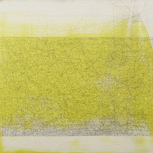 20120723213600-paul_lorenz_april_13__1000_20_lines__graphite_and_oil_on_panel_100cmx100cm_2011