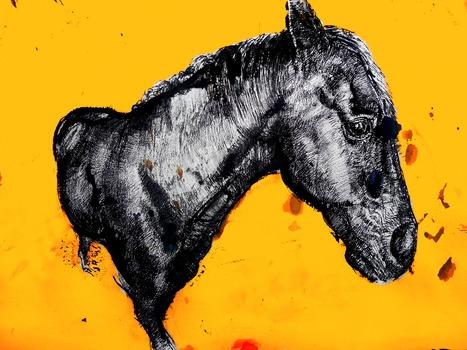 20120724203036-horse