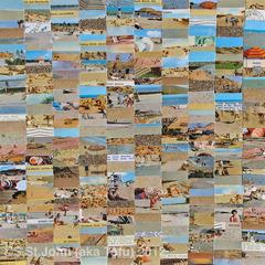 20120725031607-beachday_blog