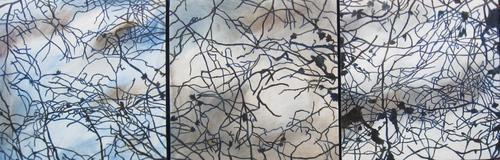 20120725192958-tirau_trees_a
