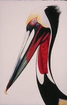 20120726165547-pelican
