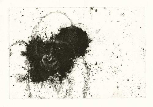 20120726192221-through_humans_scope-gorillalr