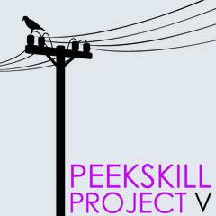 20120828150611-peekskillproject_square