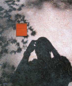 20120728230436-shadowuntitled