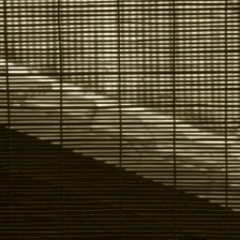 20120802145201-larry_davis_kyoto__1_182_window_shade