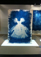 20120803092400-jennifer-glass-cyanotypes