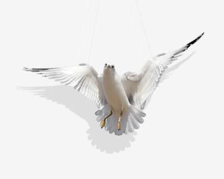 20120805231714-swing