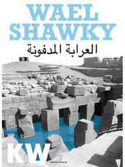 20120808023520-kw_waelshawky_web