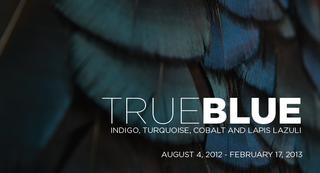20120810160555-true-blue