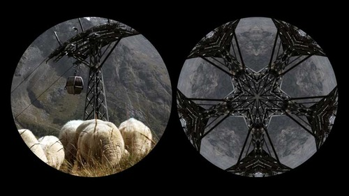 20120811082247-binocular-sheep-machine-web