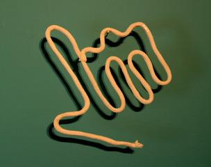 20120812185736-carey_rope_hand