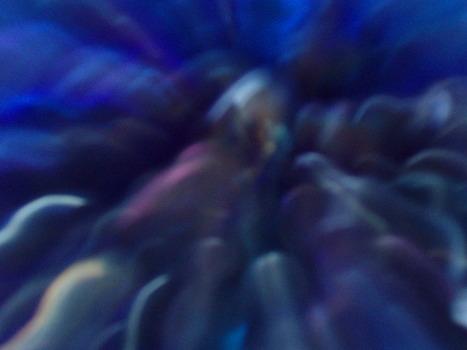 20120813150845-violeta1