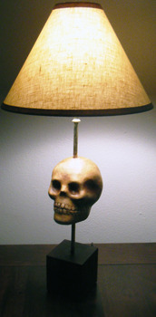 20120816202040-hageskulllamphage