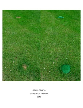 20120817182717--17da2010vagueterrain-grass_grafts