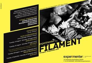 20120818075821-filament_invite