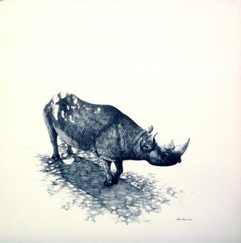 20120819051759-rhino_003