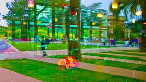 20120822190126-flowers