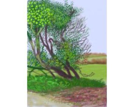 20120823012553-hockney_llegada_primavera_woldgate