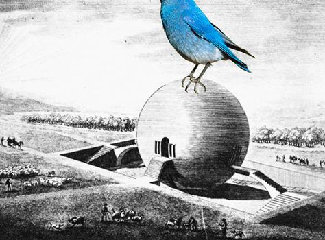 20120823231043-blue_mountain_bird_meets_ledoux_web