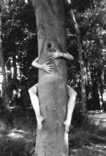 20120825170500-self-portrait_tree2