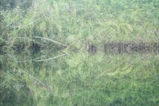20120829200855-de_image