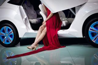20120901072138-niederhauser_ex_visions_of_modernity_06