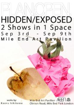 20120901203605-hidden_exposed
