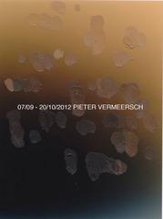 20120909144900-galerie-pieter-vermeersch