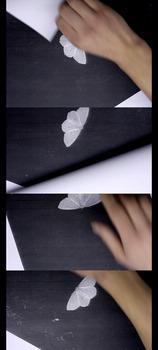 20120905024010-moth2012
