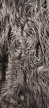 20130314044202-deforestation_n_10____ney_mil__perdomo