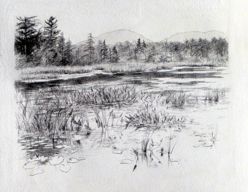 20120911131552-the_marsh