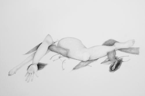 20120912053415-limbs
