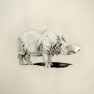 20120916045926-rhinoplasty