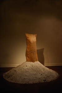 20120917215217-crw_6239_appropriate_attire_ashes_and_burlap_cleaned_up
