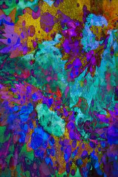 20120923190520-sunflower_splash_san_fran_aug_2012_72ppi_17