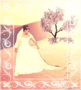 20120929155619-desertwish