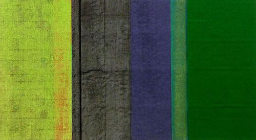 20120930004903-seagrass