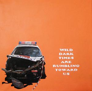20120930221034-wild_dark_times_00