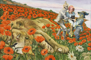 20121001011111-poppies_b