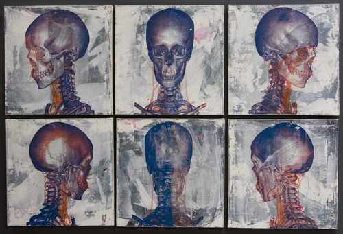 20121007100632-studies_of_a_skull
