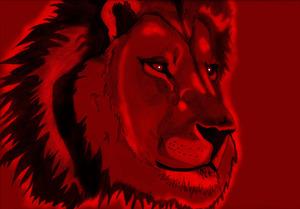 20121007183117-lion_111_001_redd