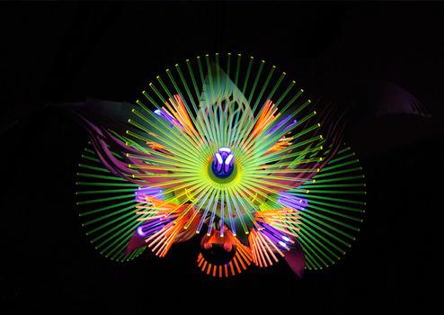 20121008105251-the_light_and_dark_fantastic