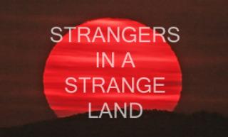20121008234430-strangers8514